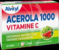 Govital Acerola 1000 à Orléans