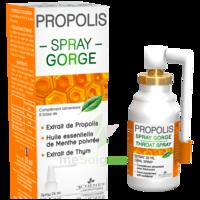 3 Chenes Propolis Spray Gorge Fl/25ml à Orléans