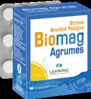 Lehning Biomag Comprimés à Croquer Agrumes B/90 à Orléans