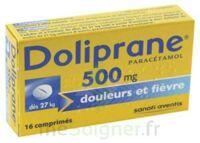 Doliprane 500 Mg Comprimés 2plq/8 (16) à Orléans