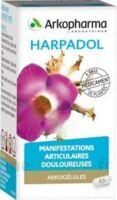 Arkogelules Harpagophyton Gélules Fl/150 à Orléans