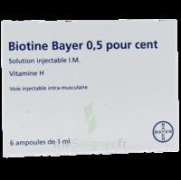 Biotine Bayer 0,5 Pour Cent, Solution Injectable I.m. à Orléans