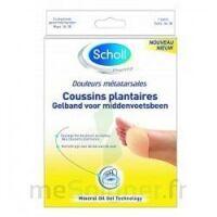 Scholl Coussin Plantaire Douleurs Métatarsales T2 à Orléans