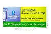 Cetirizine Biogaran Conseil 10 Mg, Comprimé Pelliculé Sécable à Orléans