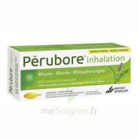 Perubore Caps Inhalation Par Vapeur Inhalation Plq/15 à Orléans
