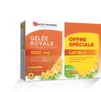 Forte Pharma Gelée Royale 1000 Mg Solution Buvable 2*b/20 Ampoules/10ml à Orléans