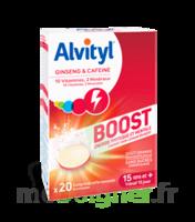 Alvityl Boost Comprimés B/20 à Orléans