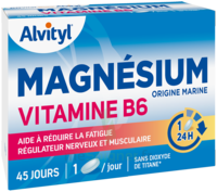 Govital Magnésium Vitamine B6 Comprimés B/45 à Orléans