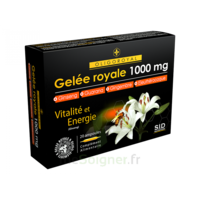 Sid Nutrition Oligoroyal Gelée Royale 1000 Mg 5g _ 20 Ampoules De 10ml à Orléans