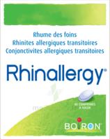 Boiron Rhinallergy Comprimés B/40 à Orléans