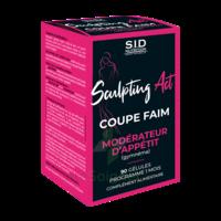 Sid Nutrition Minceur Sculpting Act Coupe Faim Gélules B/90 à Orléans