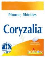 Boiron Coryzalia Comprimés Orodispersibles à Orléans